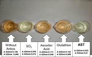 Figure 1: 2008 Chardonnay juice color results after 14 hour treatment with various antioxidants during juice settling (Photo credit: Enartis Vinquiry)