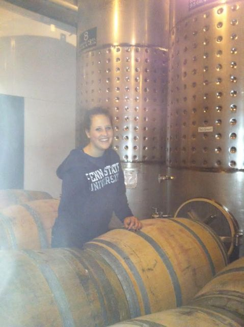 Co-op experiences at Mazza Vineyards