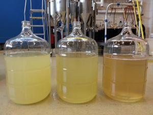 2014 Vidal Blanc juice trials to evaluate latent astrigency and aromatic retention