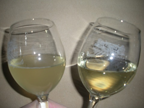 Wine that has been tested for protein stability. (Photo from: https://keswickvineyard.wordpress.com/2011/01/)