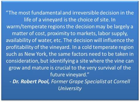 vineyard site selection quote