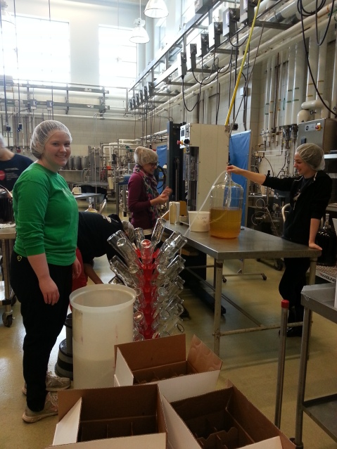 Bottling day in the Food Science Building, 2015
