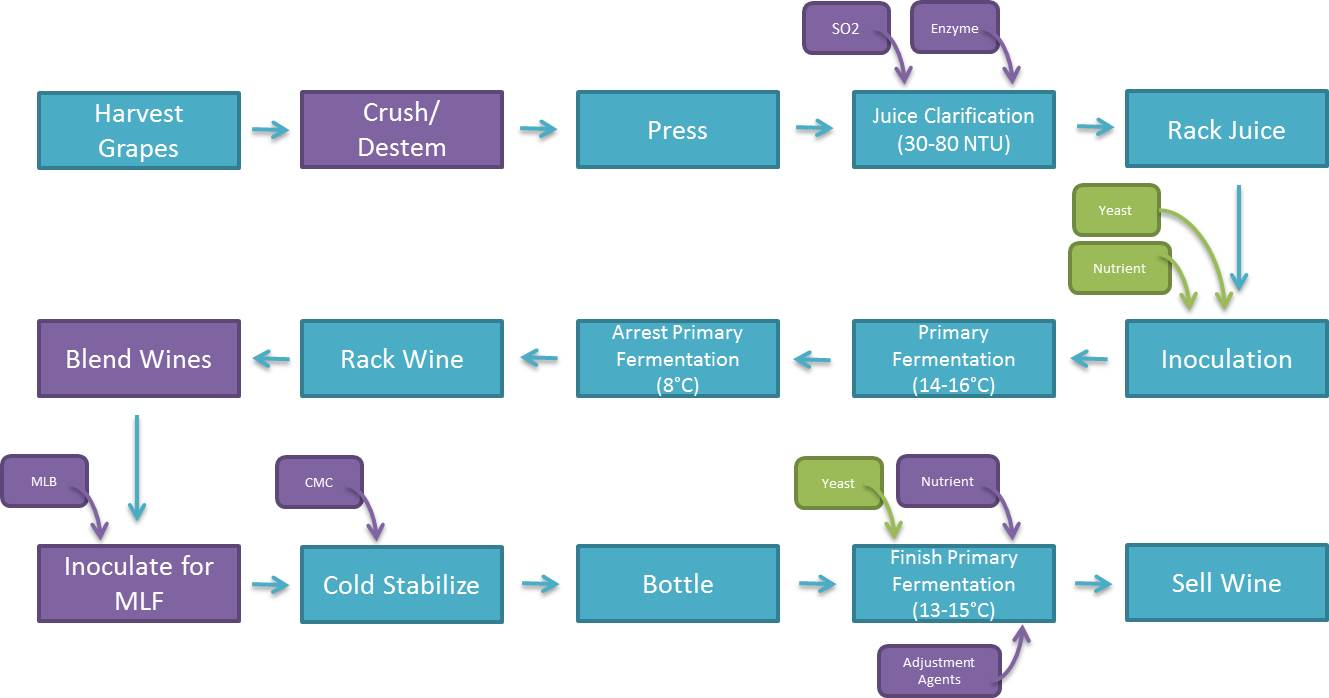 Figure 1: Flow Diagram Representing General Production of Pétillant Naturel  Sparkling Wines (Méthode Ancestrale