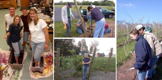 Figure 1: Extension Enologist, Denise Gardner, developed an interest in wine grape growing and production throughout high school.  Photos, from left to right, include an annual fermentation lesson during a high school agriculture class, building a trellis system at the local high school, grape vines after 2 years of growth at the high school vineyard, and a lesson from past Extension Viticulturist, Mark Chien, on how to properly prune grapevines at a PA vineyard.  Photos provided by: Denise M. Gardner