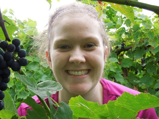 Figure 11: Graduate student, Laura Homich, enjoys time in the Noiret vineyard for her research project that focuses on the effect of canopy management practices on rotundone (black pepper flavor) development in Noiret grapes and wine.
