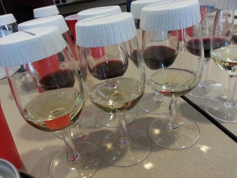 Wine tasting and sensory evaluation. Photo from: Denise Gardner