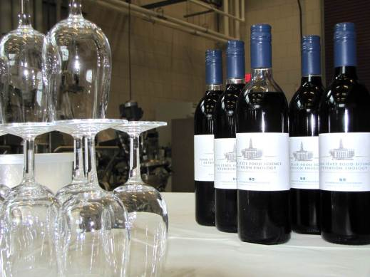 Figure 7: Bottled research wines ready for tasting. Photo by: Denise Gardner