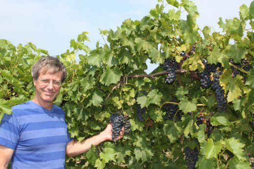 Bryan Hed from Penn State University will review current disease management techniques for the vineyard at the 2017 PA Wine Marketing & Research Board Symposium.