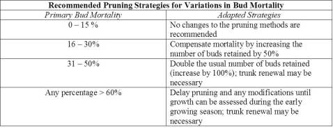 Table 1. Bud mortality thresholds and recommended adjustments to pruning strategy. Adapted from Willwerth et al., 2014.